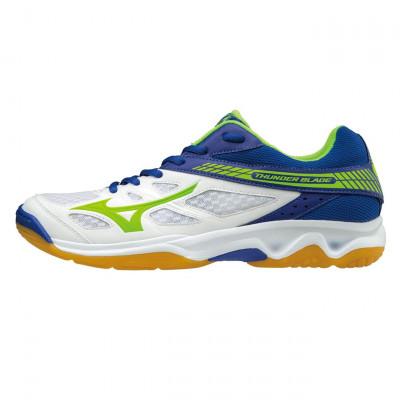 Кроссовки для волейбола Mizuno Thunder Blade V1GA1770